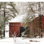 Shelter – A Pennsylvania Winter